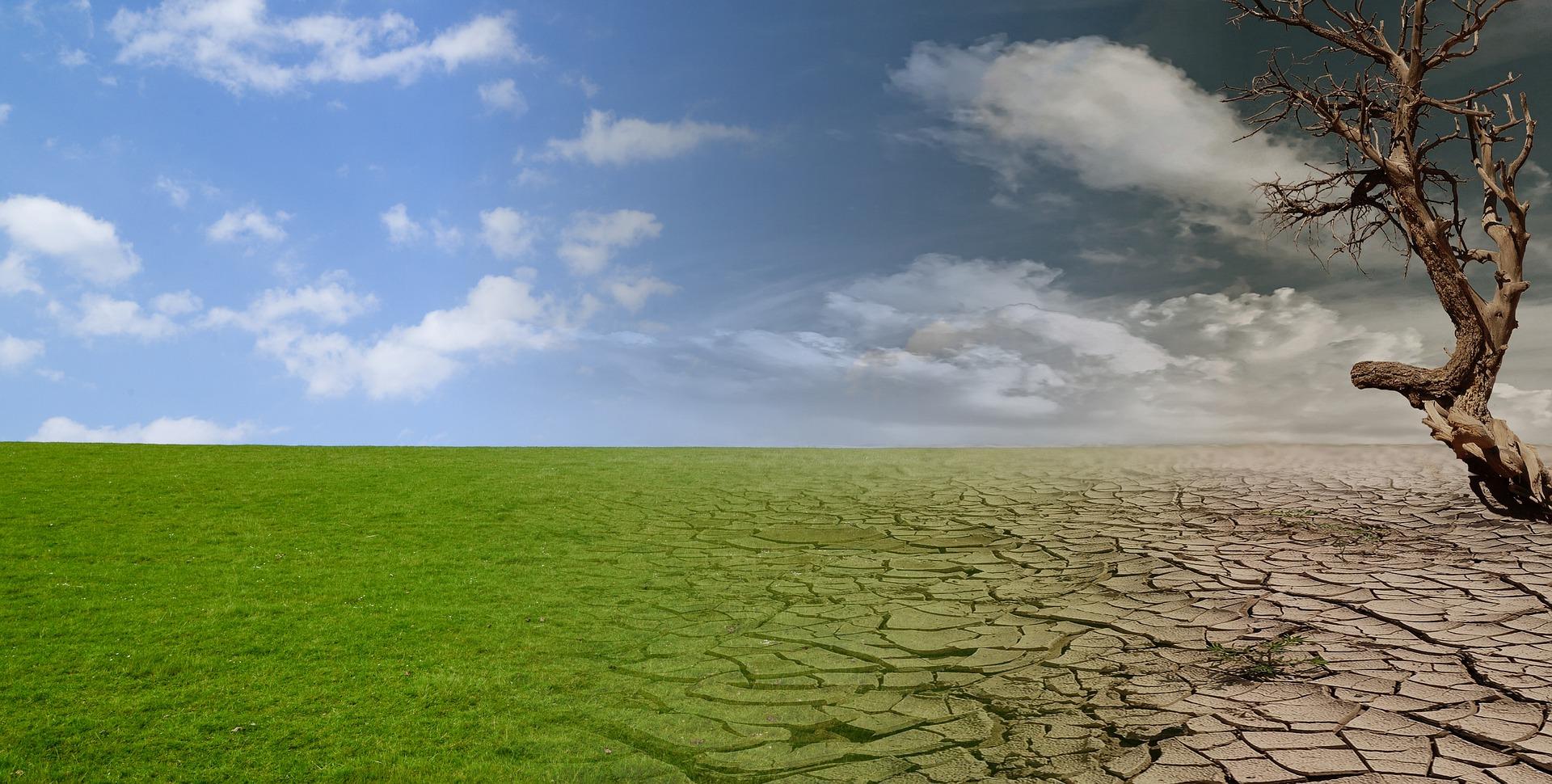 basta siccità